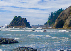 #2 Olympic National Park