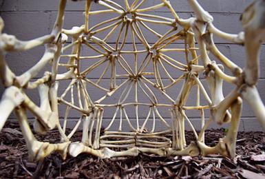Chicken Bone Skull Helmet. Inside detail shot