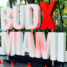 BudXMiami