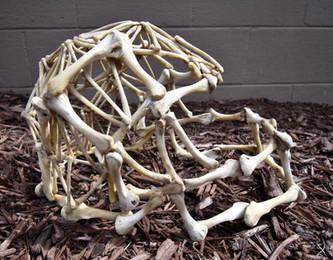 Chicken Bone Skull Helmet