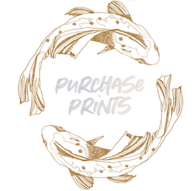 PURCHASE PRINTS.png