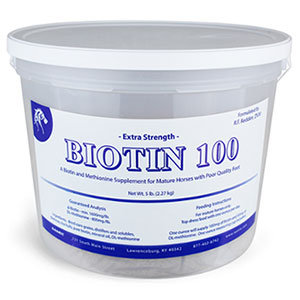 NANRIC Extra Strength Biotin 100 (Gallon Bucket)