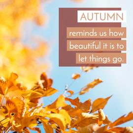 Autumn fall leaves social media post template