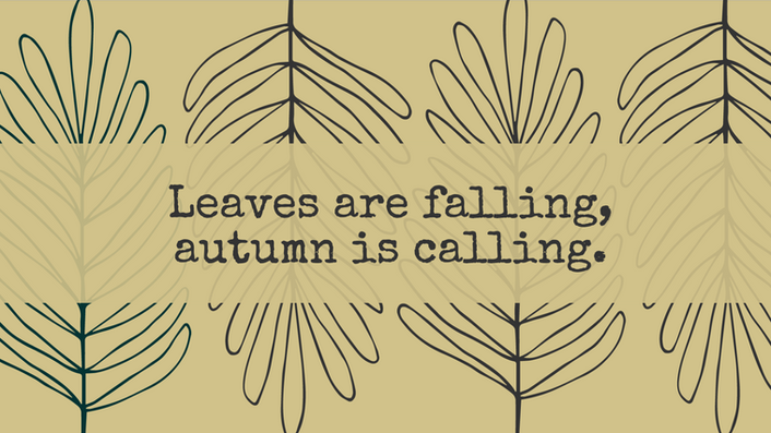 Fall social media template with a quote about falling leaves in autumn on a tan background with foliage
