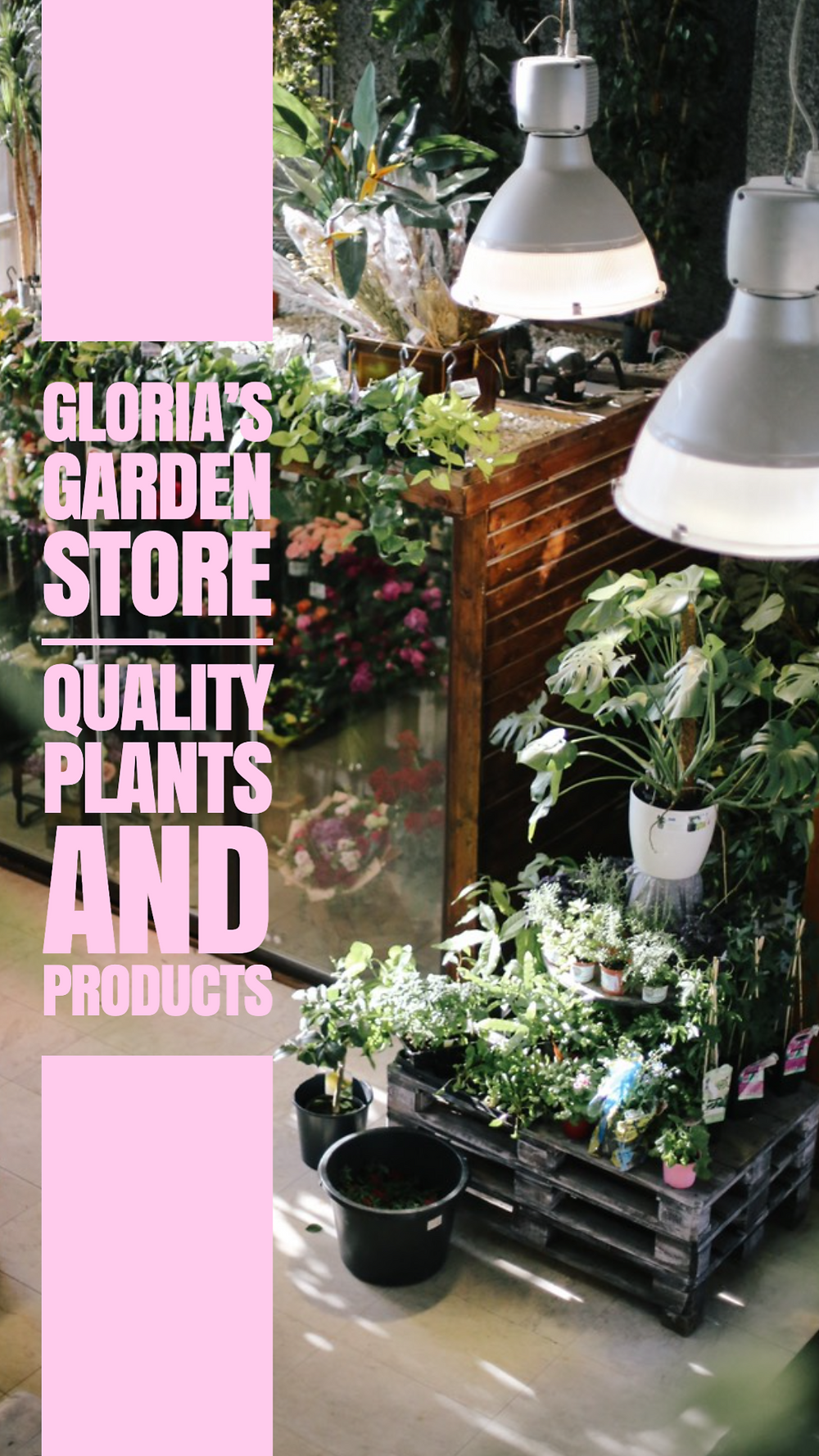 National Plant a Flower Day social media story template, garden store story with greenery plants and pink text