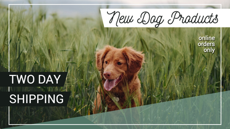New products social media post template for pet stores and veterinary