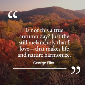 Fall leaves quote post template for social media