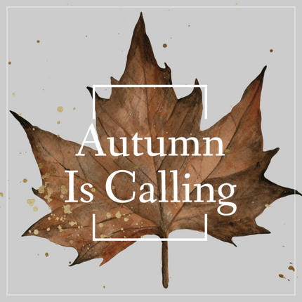 Autumn leaf template with maple leaf for social media