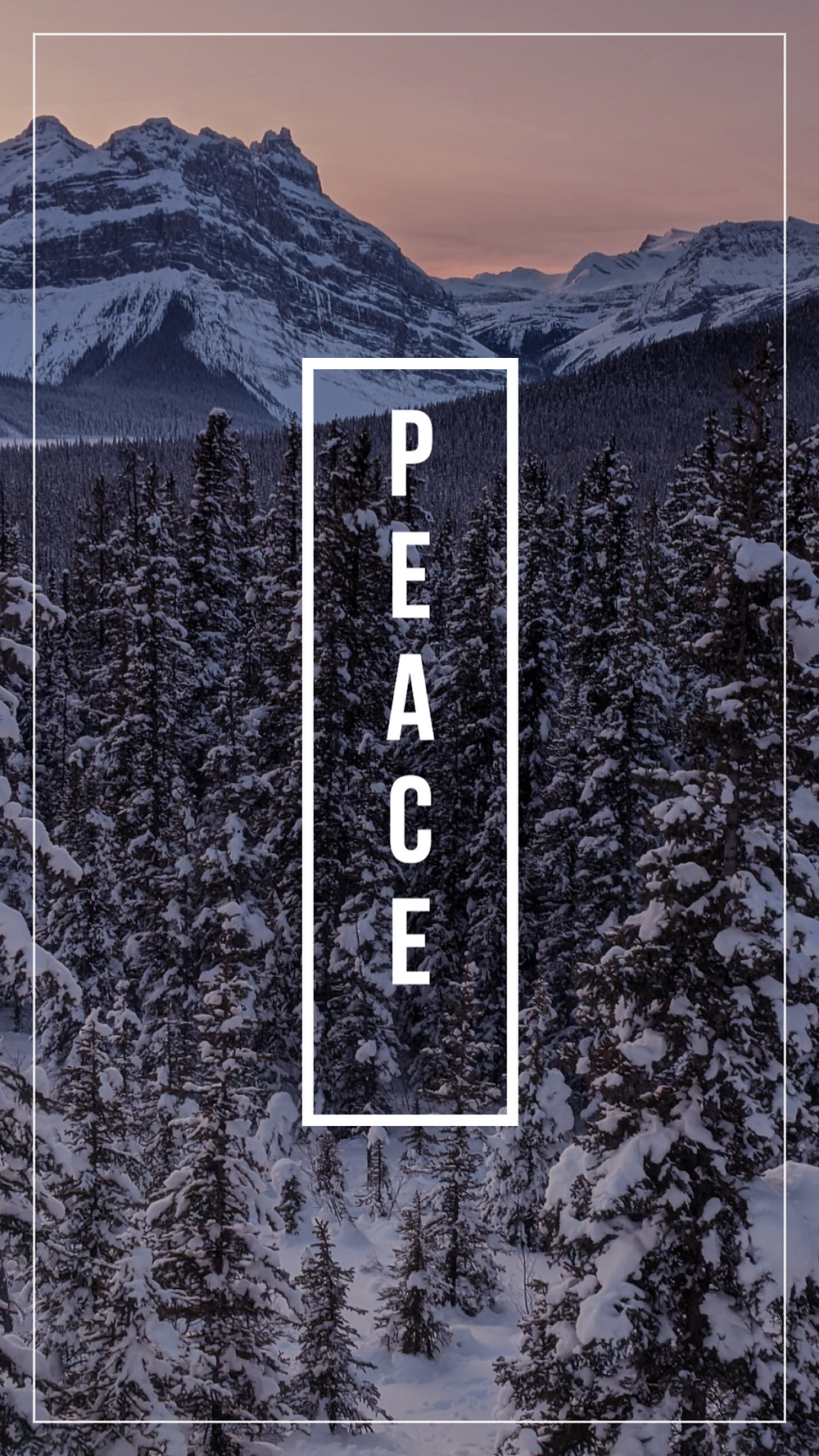Peace social media story template with snowy trees