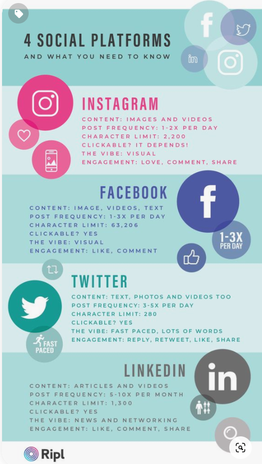 Four social platforms infographic