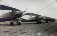 Arado Ar66