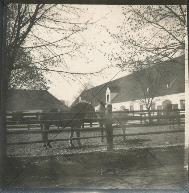 Remonte-Depot April 1916 (2).jpg