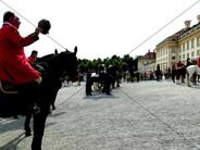Schleppjagd am Schloss 2011 (17).jpg