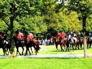 Schleppjagd am Schloss 2011 (23).jpg