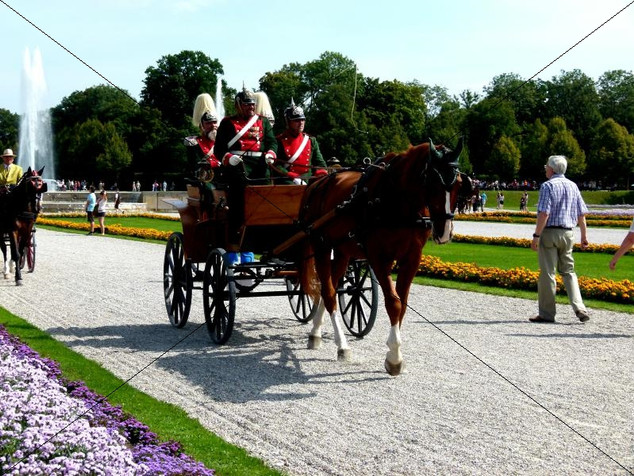 Schleppjagd am Schloss 2011 (14).jpg