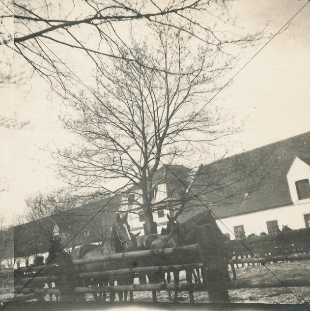 Remonte-Depot April 1916.jpg