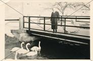 Schlosskanal 1959.jpg