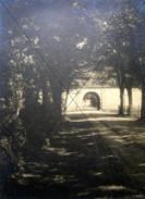 Wilhelmshof.jpg