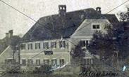Blauer Karpfen um 1890.jpg