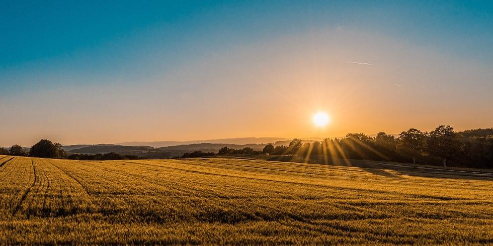 Miracle Morning: Gemeinsam starten wir voller Energie in den Tag!