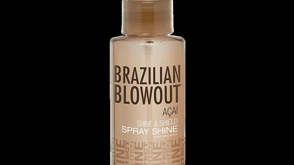 Shine & Shield Spray Shine