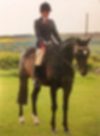 Ardsley Horse and Pony Club