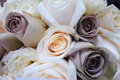 Rose%20Photo_edited.jpg