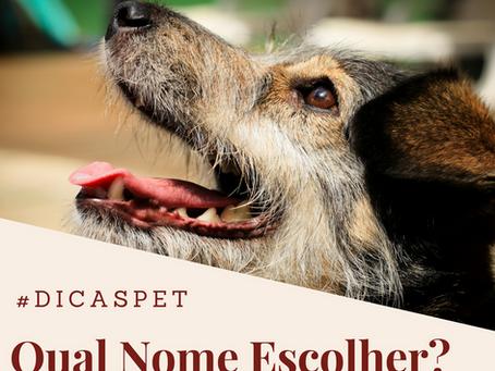Nomes para seu PET. 200 Ideias criativas e originais para animais de estimação.