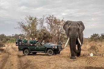 Africa 2019.jpg