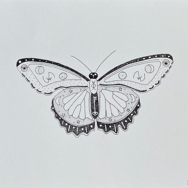 Dark Moon Moth