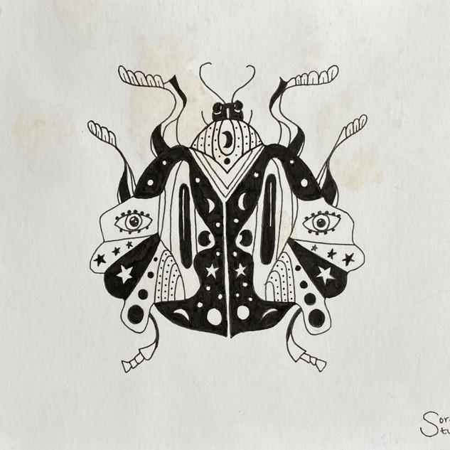 Vercua Beetle