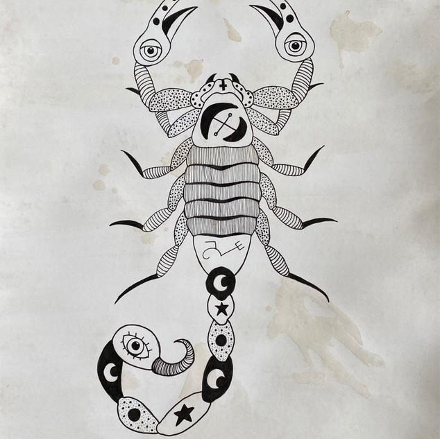 Jezebel Scorpion