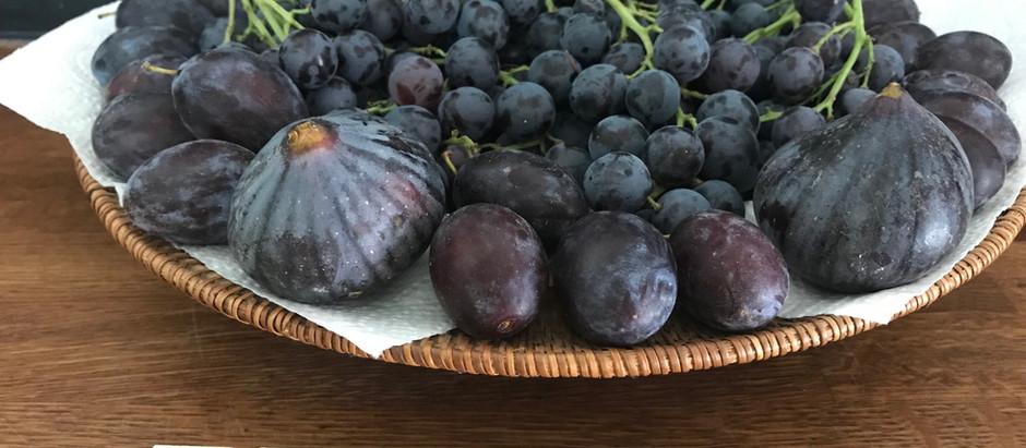 Fruits de Septembre