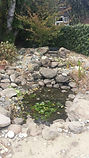 1500 gallon pond with hole in liner