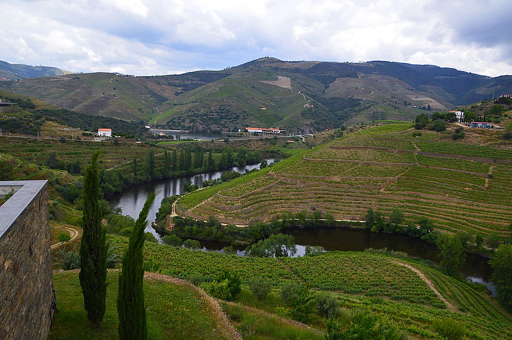 Wine terraces for miles in the Douro