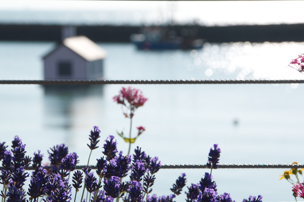 Views of Folkestone