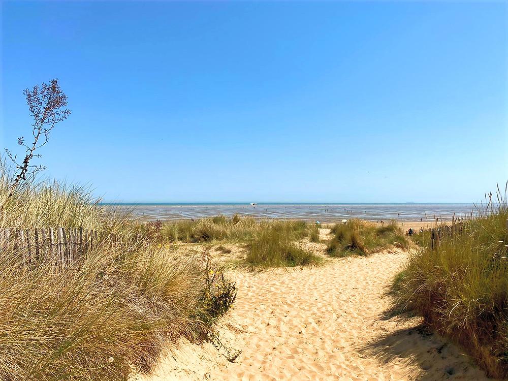 Sandy beaches and wild sand sunes at Greatstone