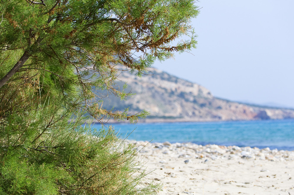 Agiassos beach, Naxos