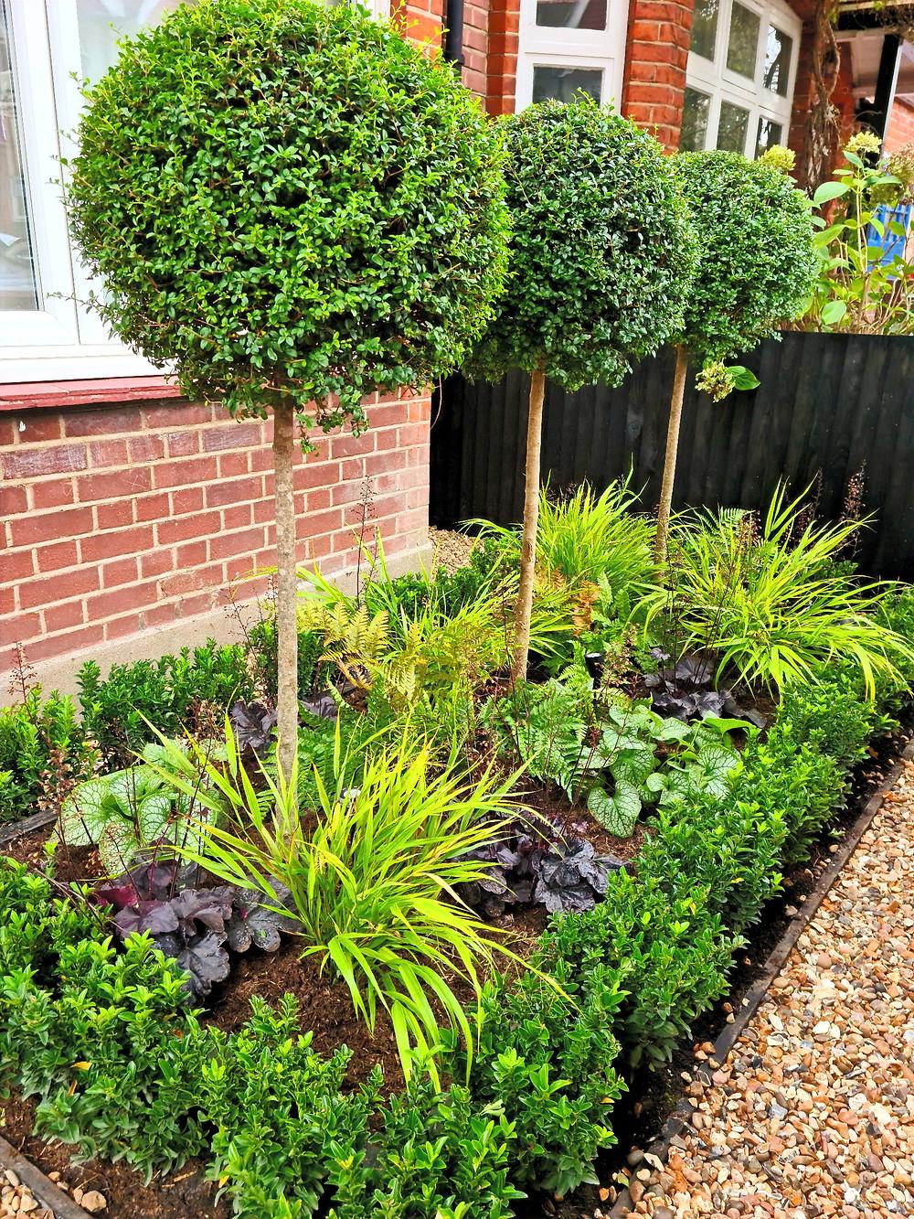 North Facing Front Garden