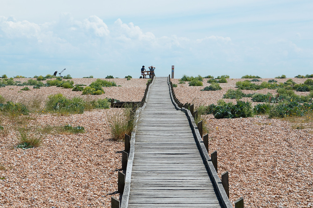 Dungeness Beach and Nature Reserve