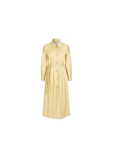 PERENNIAL SHIRT DRESS