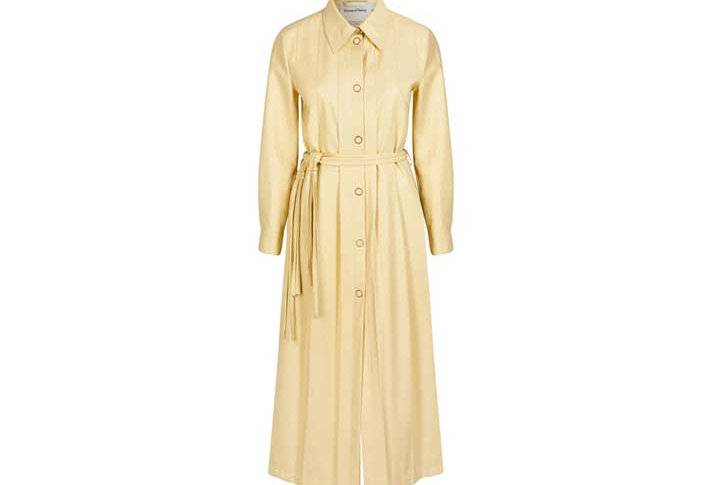 PERENNIAL SHIRT DRESS