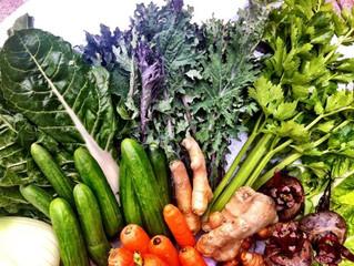 צמחים ומזונות לשיפור העיכול ושמירה על גוף נקי מרעלים