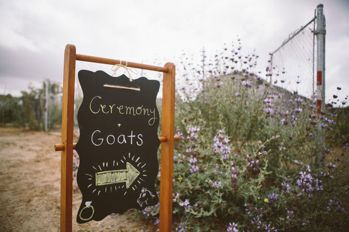 Fun signs to welcome guests