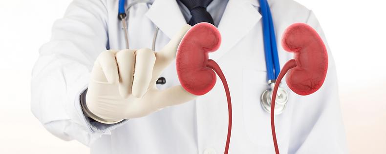 Capa para Site Prime Care Urologia.png