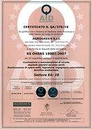 BS OHSAS 18001.jpg