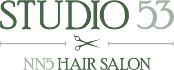 Studio 53 Logo Green No Background - Sci