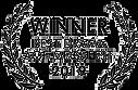 Winner Best Drama Life After Film