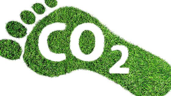 Understanding carbon neutral, carbon negative, net zero, climate positive