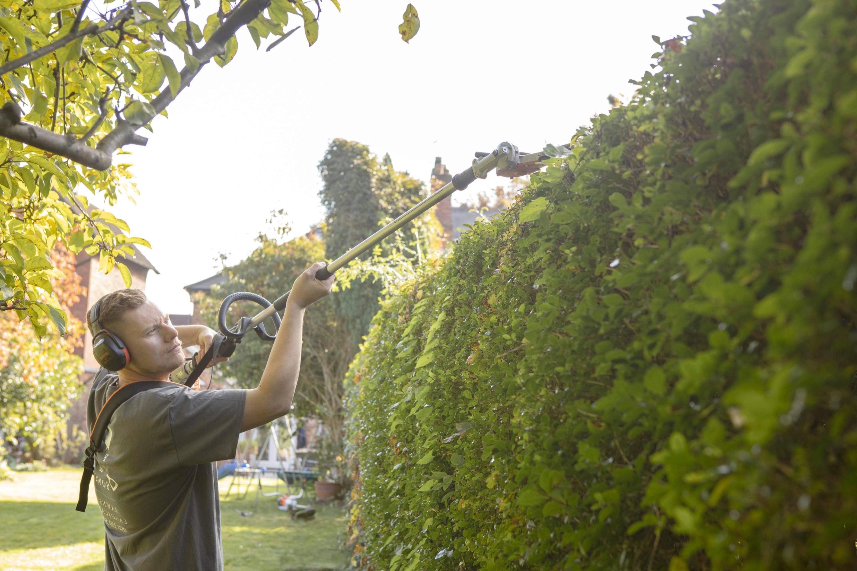 Hedge Cutting & Care